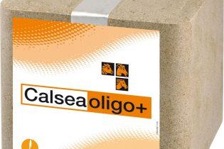Calseabloc Mineralenlikblok - Calsea Oligo+