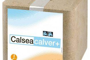 Calseabloc Mineralenlikblok - Calsea Calver+