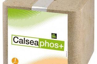 Calseabloc Mineralenlikblok - Calsea Phos+